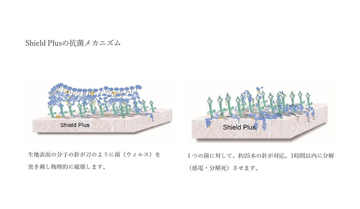 Shield Plusの抗菌メカニズム